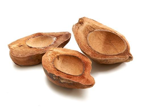 Kokosnuss halb natur