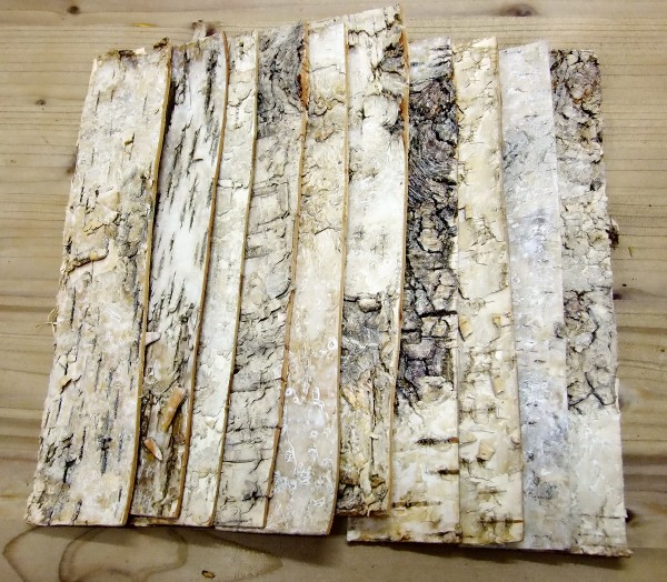sibirische Birke Rindenstreifen natur ca. 4x20cm 20 Stück Bastelstreifen