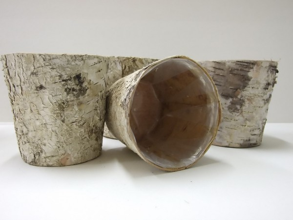 Birke Topf 13cm natur 4 Stück